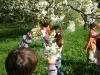 1c_primavera_longhena_2011052011