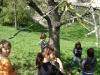 1c_primavera_longhena_2011082011