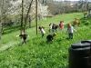 1c_primavera_longhena_2011102011