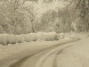 2010-neve-marzo02
