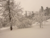 2010-neve-marzo03