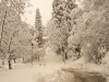 2010-neve-marzo05