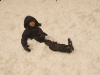 2010-neve-marzo24