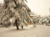 2010-neve-marzo30