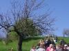 2c_pausa_primavera_2011032011