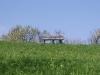 2c_pausa_primavera_2011172011