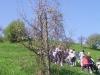 2c_pausa_primavera_2011192011