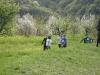5a_5b_5c_attivita_sportive_2011372011