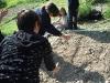 insalata_5b_092011