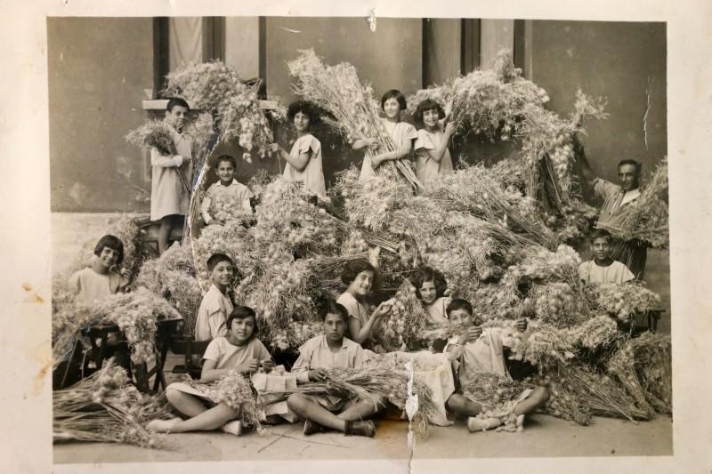 Scuola Longhena di Bologna, 1928
